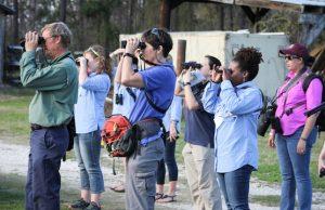 A group of people use binoculars to watch birds.