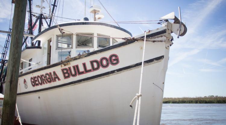 1704-Blessing of the Fleet-Bulldog-42 (2)